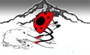 The Ski Bug